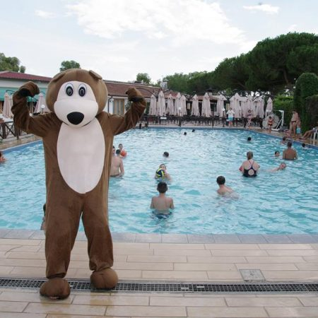 bear_piscina